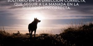 Frases de lobos