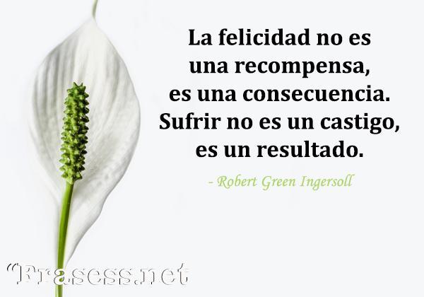 Frases espirituales - La felicidad no es una recompensa, es una consecuencia. Sufrir no es un castigo, es un resultado.