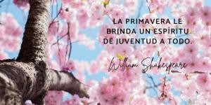 Frases de la primavera