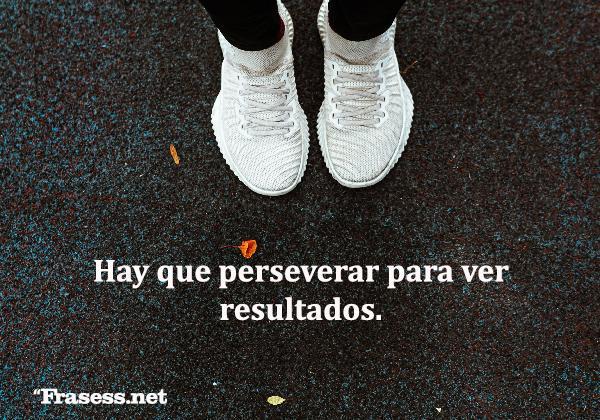 Frases motivadoras - Hay que perseverar para ver resultados.