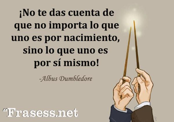 Frases de Harry Potter - ¡No te das cuenta de que no importa lo que uno es por nacimiento, sino lo que uno es por sí mismo!