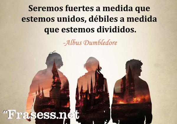 Frases de Harry Potter - Seremos fuertes a medida que estemos unidos, débiles a medida que estemos divididos.