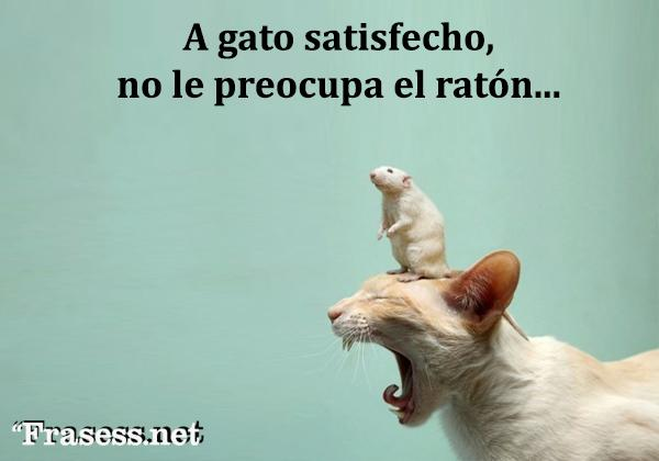 Frases mexicanas con significado - A gato satisfecho no le preocupa el ratón...