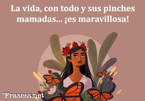 Frases mexicanas con significado - La vida, con todo y sus pinches mamadas, es maravillosa.