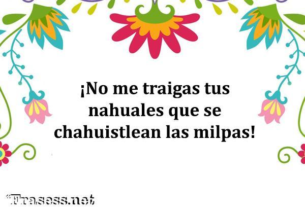 Frases mexicanas con significado - No me traigas tus nahuales que se chahuistlean las milpas.