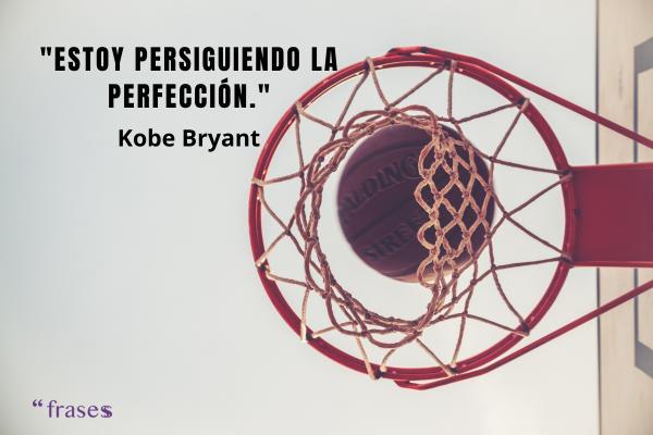Frases de baloncesto - Estoy persiguiendo la perfección.