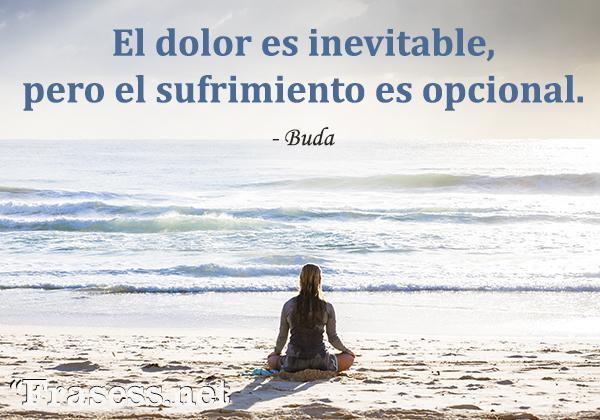 Frases de Buda - El dolor es inevitable, pero el sufrimiento es opcional.