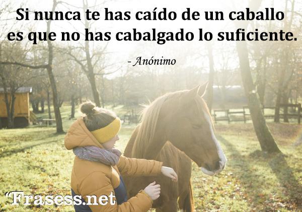 Frases de caballos - Si nunca te has caído de un caballo es que no has cabalgado lo suficiente.