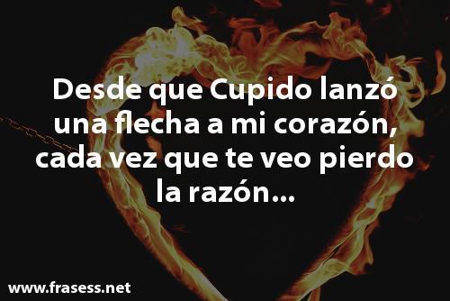 Las mejores dedicatorias de amor cortas - Desde que Cupido lanzó una flecha a mi corazón, cada vez que te veo pierdo la razón...