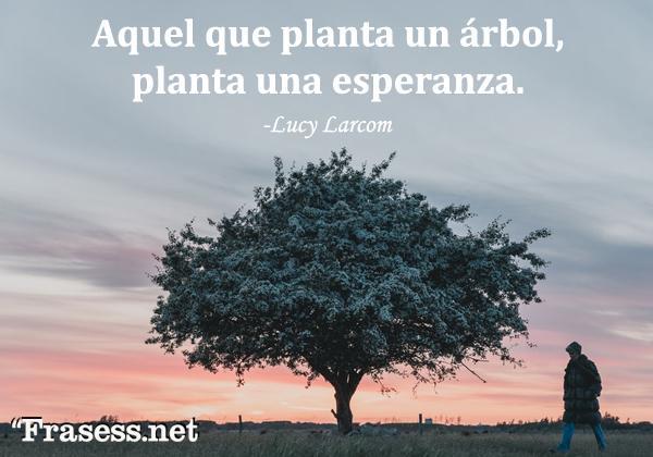 Frases de árboles - Aquel que planta un árbol, planta una esperanza.