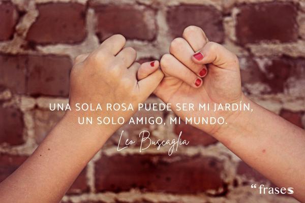 Frases para una amiga especial - Una sola rosa puede ser mi jardín, un solo amigo, mi mundo.