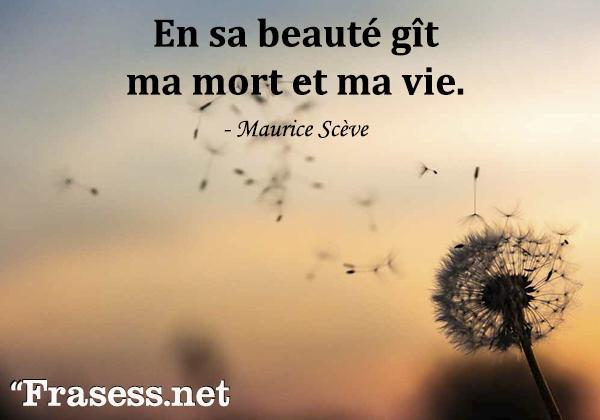 Frases de amor en francés traducidas - En sa beauté gît ma mort et ma vie. (En su belleza yace mi muerte y mi vida)