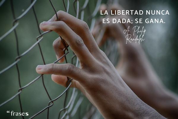 Frases sobre la democracia - La libertad nunca es dada; se gana.