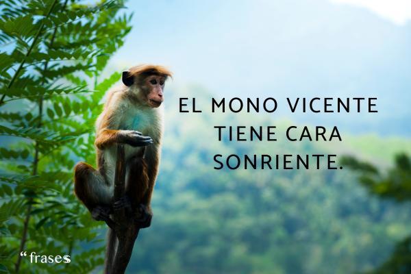 Frases que riman - El mono Vicente tiene cara sonriente.