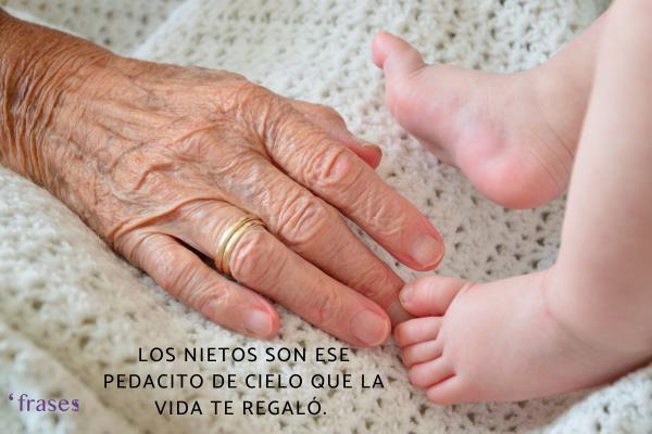 Frases para un recién nacido - Los nietos son ese pedacito de cielo que la vida te regaló.