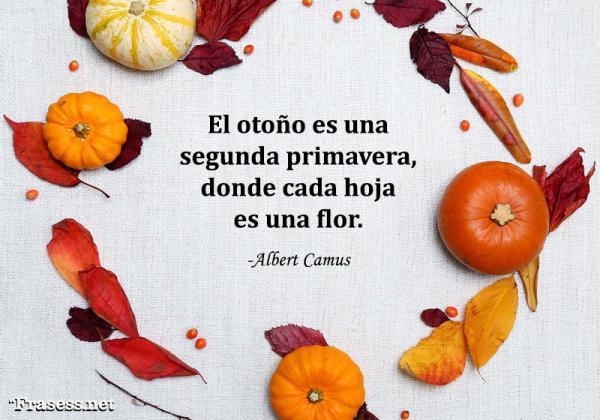 Frases de octubre - El otoño es una segunda primavera, donde cada hoja es una flor.