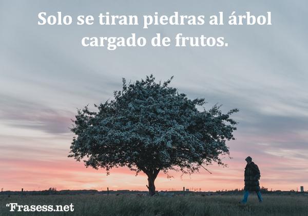 Frases y proverbios árabes - Solo se tiran piedras al árbol cargado de frutos.