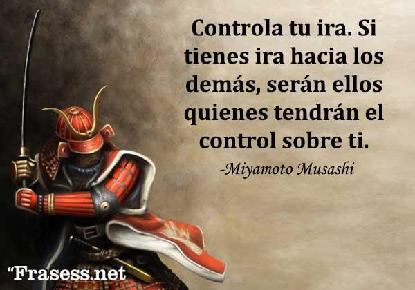 Frases de guerreros - Controla tu ira. Si tienes ira hacia los demás, serán ellos quienes tendrán el control sobre ti.