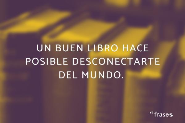 Frases de desconexión - Un buen libro hace posible desconectarte del mundo.