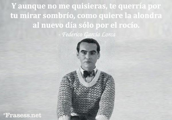 Frases de Federico García Lorca - Y aunque no me quisieras, te querría por tu mirar sombrío, como quiere la alondra al nuevo día sólo por el rocío.