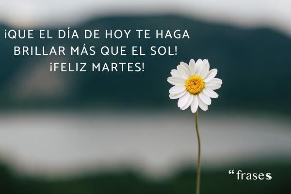 Frases de martes - ¡Que el día de hoy te haga brillar más que el sol! ¡Feliz martes!