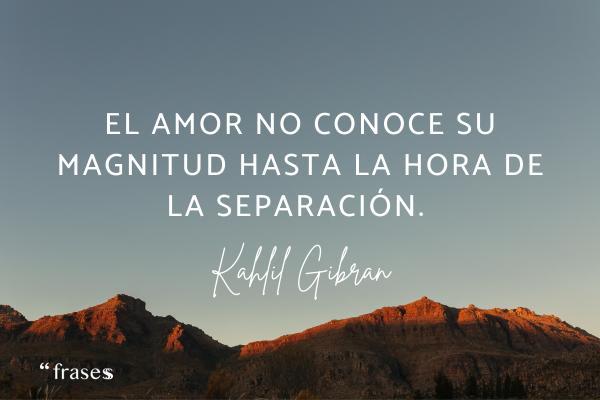 Frases de duelo - El amor no conoce su magnitud hasta la hora de la separación.