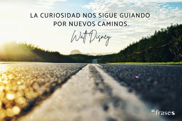 Frases de caminos - La curiosidad nos sigue guiando por nuevos caminos.