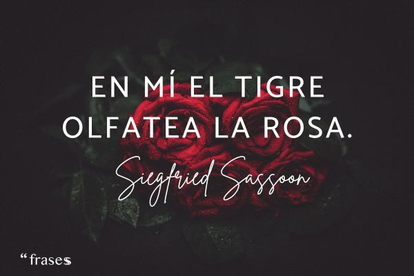 Frases de tigres - En mí el tigre olfatea la rosa.