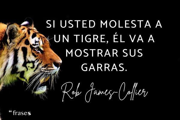 Frases de tigres - Si usted molesta a un tigre, él va a mostrar sus garras.