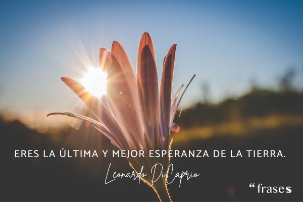 Frases de Leonardo Dicaprio - Eres la última y mejor esperanza de la Tierra.
