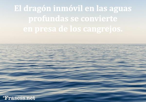 Frases y proverbios chinos - El dragón inmóvil en las aguas profundas se convierte en presa de los cangrejos.
