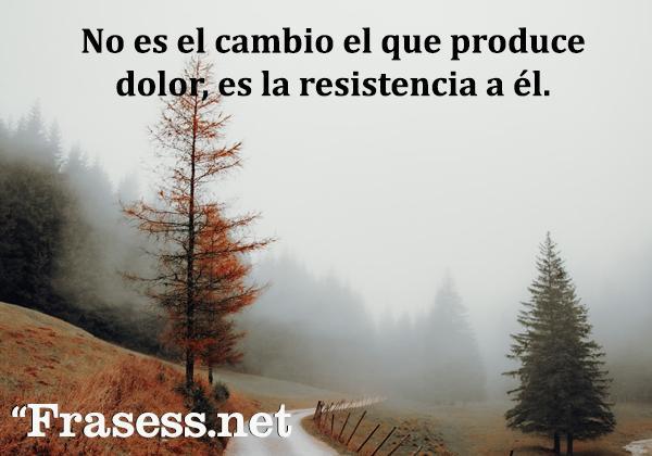 Frases zen - No es el cambio el que produce dolor, es la resistencia a él.
