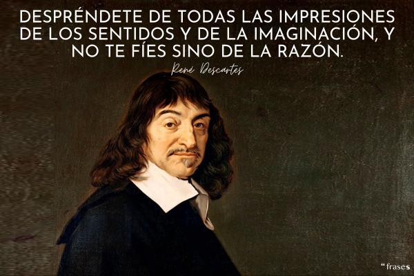 Frases de René Descartes