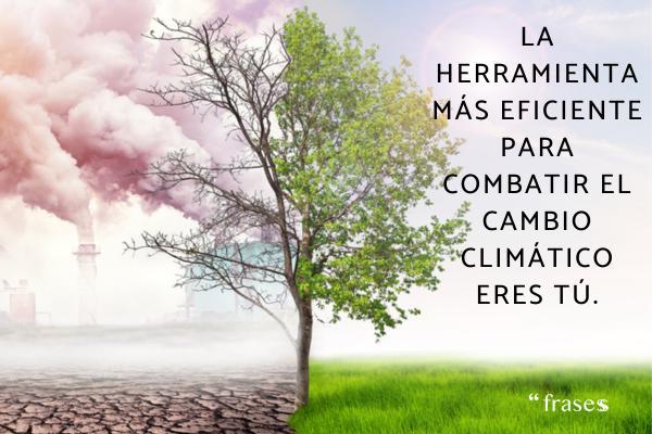 Frases del cambio climático
