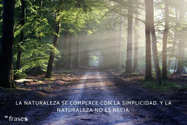 Frases de Isaac Newton - La naturaleza se complace con la simplicidad. Y la naturaleza no es necia.