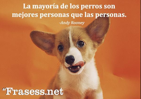 Frases de perros - La mayoría de perros son mejores personas que las personas.