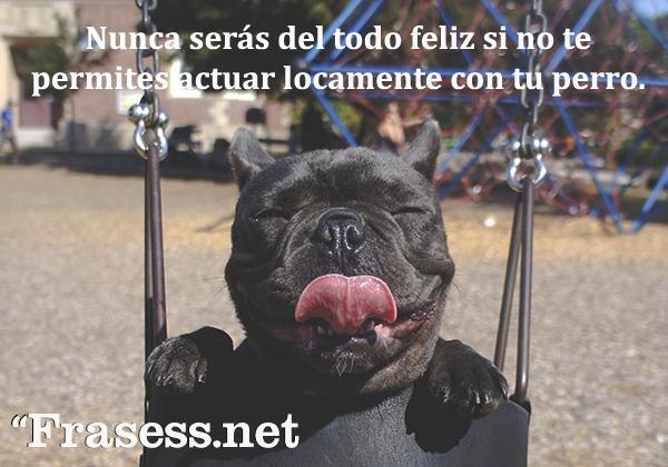 Frases de perros - Nunca serás del todo feliz si no te permites actuar locamente con tu perro.