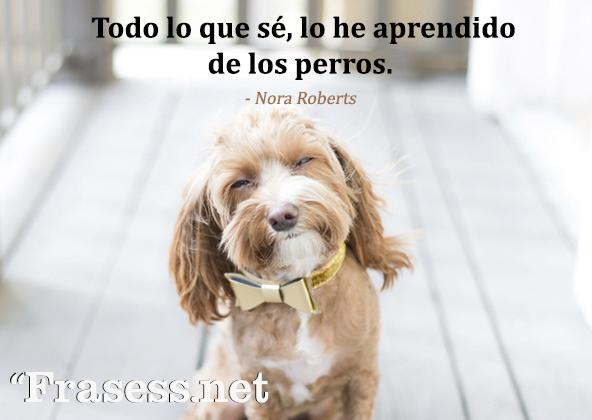 Frases de perros - Todo lo que sé, lo he aprendido de los perros.