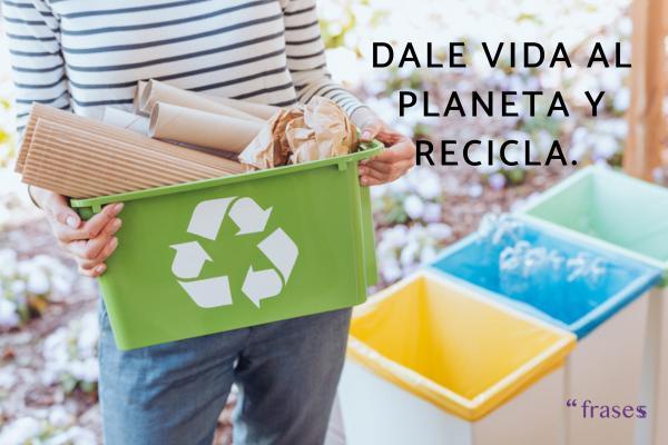 Frases de reciclaje