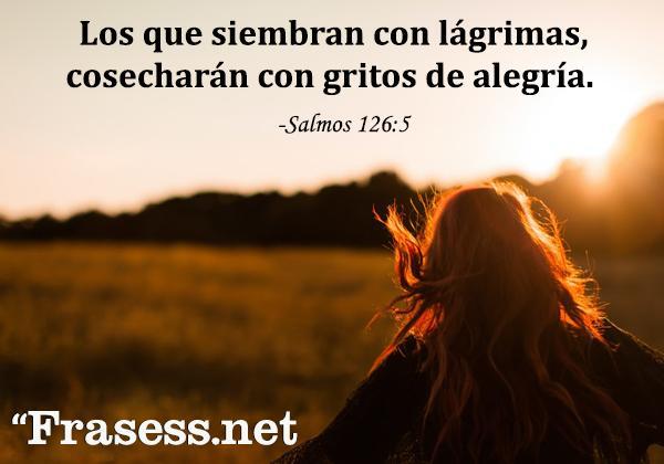 Frases cristianas cortas - Los que siembran con lágrimas cosecharán con gritos de alegría.
