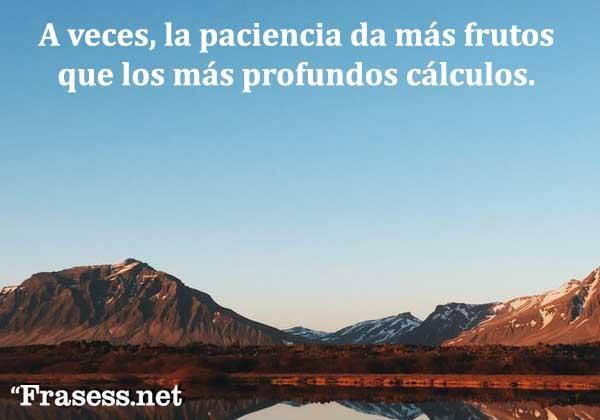 Frases de tranquilidad - A veces, la paciencia da más frutos que los más profundos cálculos.