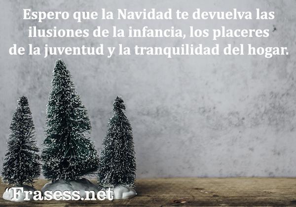 Frases de Navidad cortas - Espero que la Navidad te devuelva las ilusiones de la infancia, los placeres de la juventud y la tranquilidad del hogar.