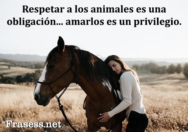 Frases de respeto - Respetar a los animales es una obligación... amarlos es un privilegio.