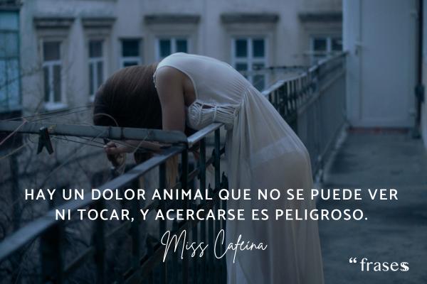 Frases de Miss Caffeina - Hay un dolor animal que no se puede ver ni tocar, y acercarse es peligroso.