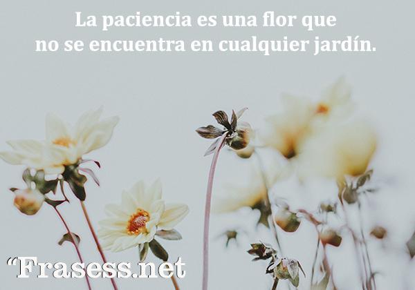 Frases de paciencia - La paciencia es una flor que no se encuentra en cualquier jardín.