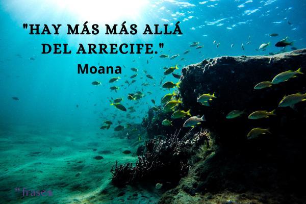 Frases de princesas Disney - Hay más más allá del arrecife.