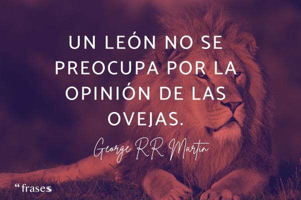 Frases de leones - Un león no se preocupa por la opinión de las ovejas.