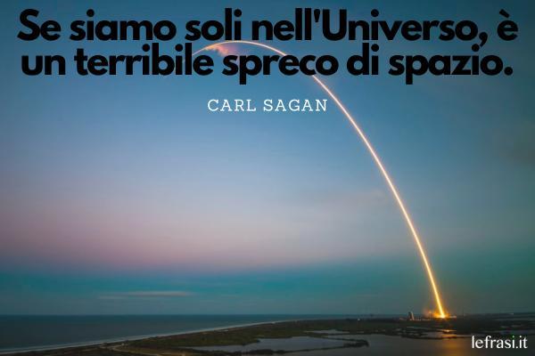 Frasi sullo spazio - Se siamo soli nell'Universo, è un terribile spreco di spazio.