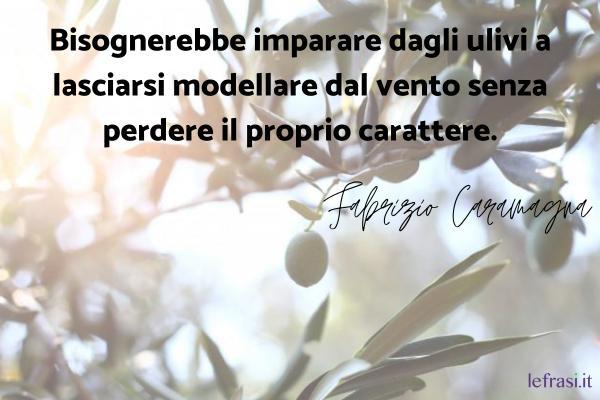 Frasi di Fabrizio Caramagna - Bisognerebbe imparare dagli ulivi a lasciarsi modellare dal vento senza perdere il proprio carattere.