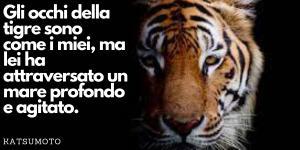 Frasi sulla tigre